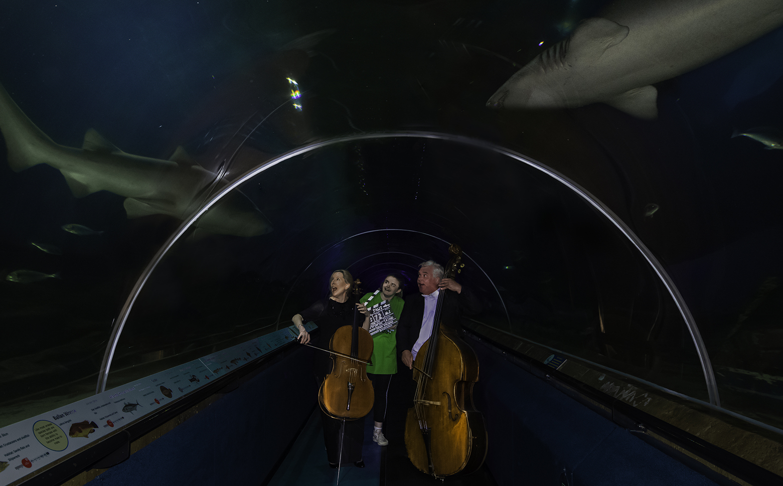 EIFF & RSNO at Deep Sea World