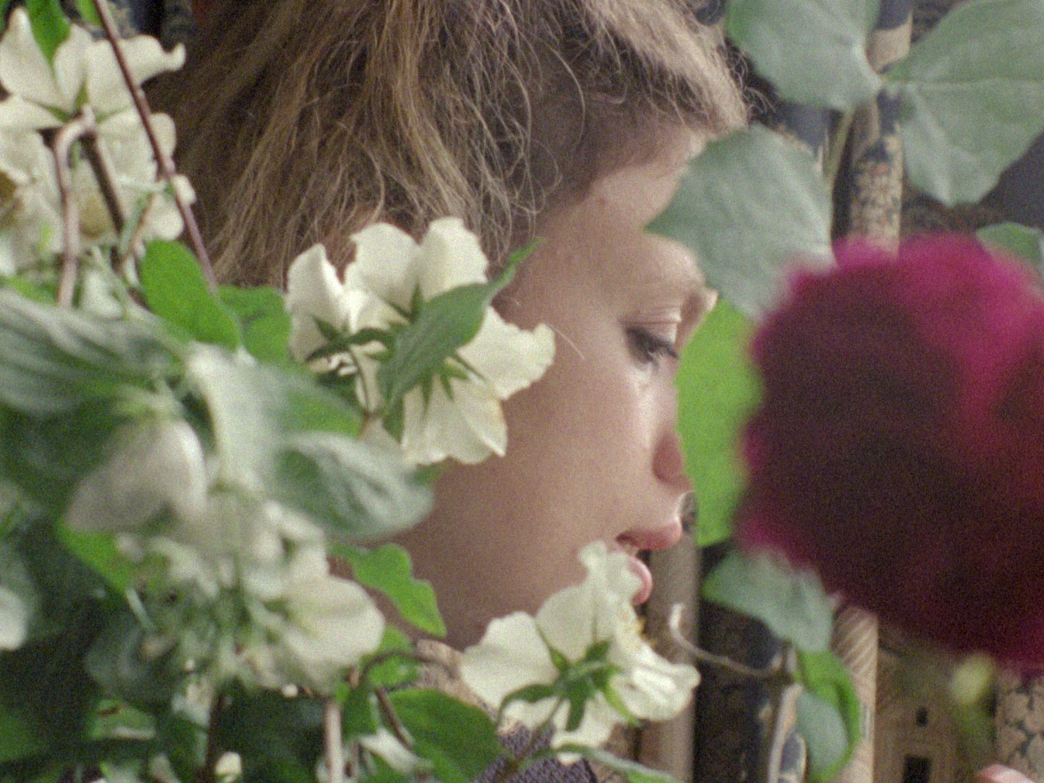 Monument: A close up on a person's face in profile, surrounded by flowers and leaves, shot in soft focus.